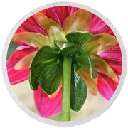 Petal Support Round Beach Towel
