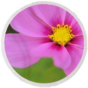 Petaline - P01a Round Beach Towel by Variance Collections
