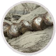 Petrified Forest 1 Round Beach Towel