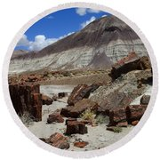 Petrified Forest 2 Round Beach Towel