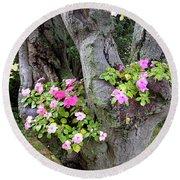 Petunia Tree Round Beach Towel