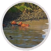 Phillip Island 2 Round Beach Towel