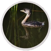 Pied-billed Grebe In The Reeds Round Beach Towel