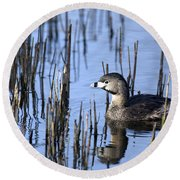 Pied-billed Grebe, Montreal Botanical Round Beach Towel