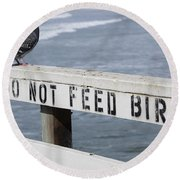 Pigeons Cannot Read Round Beach Towel