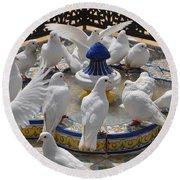 Pigeons Of Maria Luisa Parque Round Beach Towel