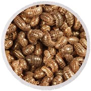 Pill Bugs Round Beach Towel