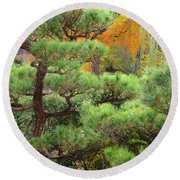 Pine And Autumn Colors In A Japanese Garden II Round Beach Towel
