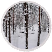 Pine Forest In January Round Beach Towel
