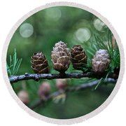 Pinecone Party Line Round Beach Towel