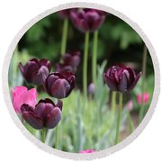 Pink And Purple Tulips Round Beach Towel