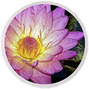 Pink And Yellow Waterlily Round Beach Towel