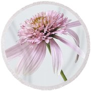 Pink Cone Flower Round Beach Towel
