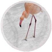 Pink Flamingo  Round Beach Towel