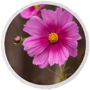 Pink Flowers And Wood  Round Beach Towel