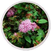 Pink Flowers Of Little Bavaria Round Beach Towel