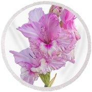 Pink Gladiolus Round Beach Towel