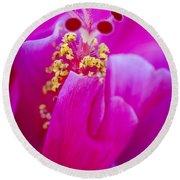 Pink Hibiscus 2 Round Beach Towel