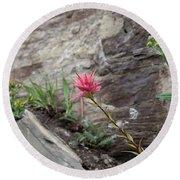 Pink Mountain Flower Round Beach Towel