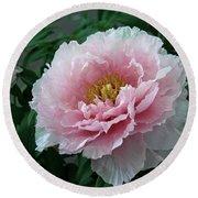 Pink Peony Flowers Series 2 Round Beach Towel