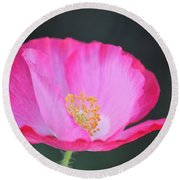 Pink Poppy 3 Round Beach Towel