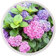 Pink Purple Hydrangeas Round Beach Towel