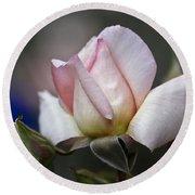 Pink Rose Bloom Round Beach Towel