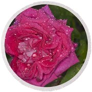 Pink Rose Wendy Cussons With Raindrops Round Beach Towel