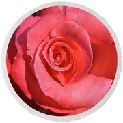 Pink Tea Rose Round Beach Towel