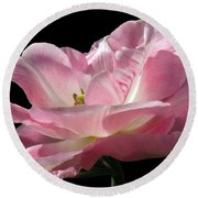 Pink Tulip Isolated Round Beach Towel