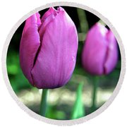 Pink Tulips Round Beach Towel
