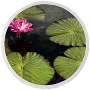Pink Water Lily I Round Beach Towel