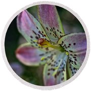 Pistil Powered By Stamen Round Beach Towel