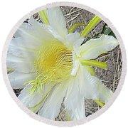 Pitaya Flower Round Beach Towel