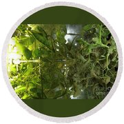 Plant Growth Experiment, Iss Round Beach Towel