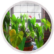 Planter In France Round Beach Towel