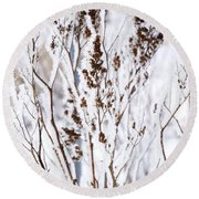 Plants In Winter Round Beach Towel