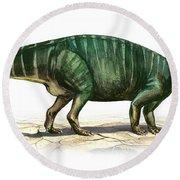 Plateosaurus Engelhardti, A Prehistoric Round Beach Towel