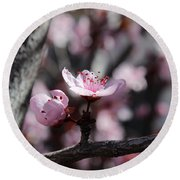 Plum Blossoms 9 Round Beach Towel