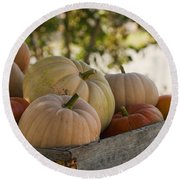 Plump And Purdy Pumpkins Round Beach Towel