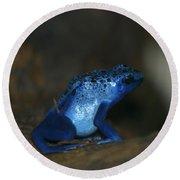 Poisonous Blue Frog 03 Round Beach Towel