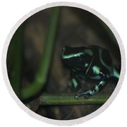 Poisonous Green Frog 04 Round Beach Towel