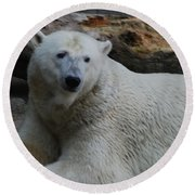 Polar Bear 1 Round Beach Towel