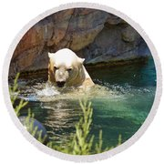 Polar Bear Swim Round Beach Towel