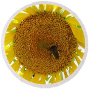 Pollen Hunter Round Beach Towel