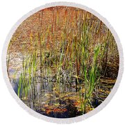 Pond And Rushes Round Beach Towel