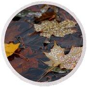 Pond Leaf Dew Drops Round Beach Towel by LeeAnn McLaneGoetz McLaneGoetzStudioLLCcom