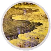 Pond Scum One Round Beach Towel