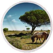 Pony Pasturing Round Beach Towel by Carlos Caetano