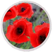 Poppies Of Stone Round Beach Towel by Empty Wall